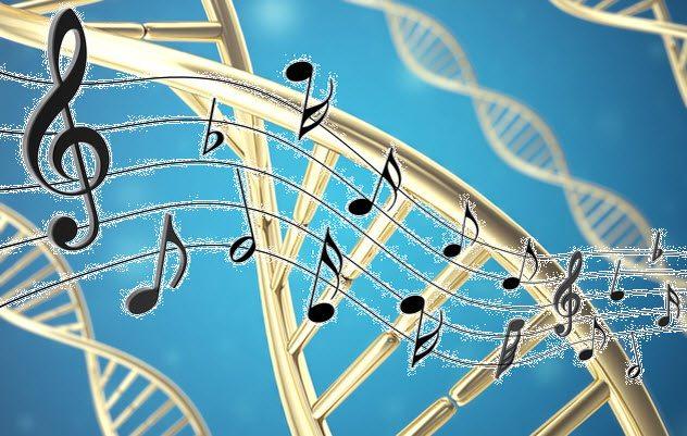 ДНК и вирусы