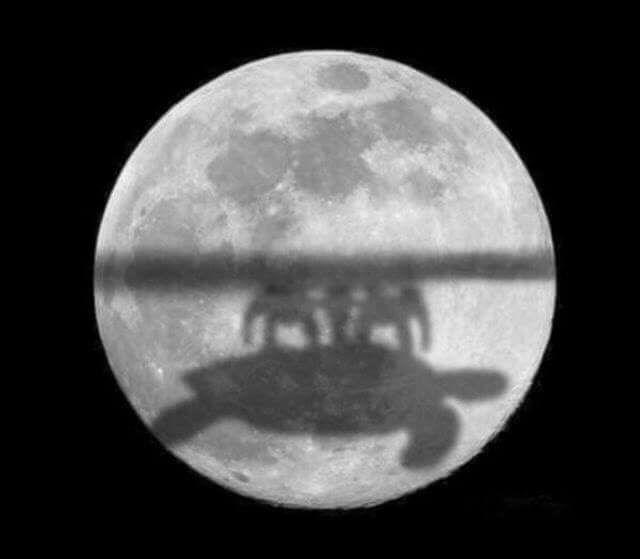 Теория полой земли и луна