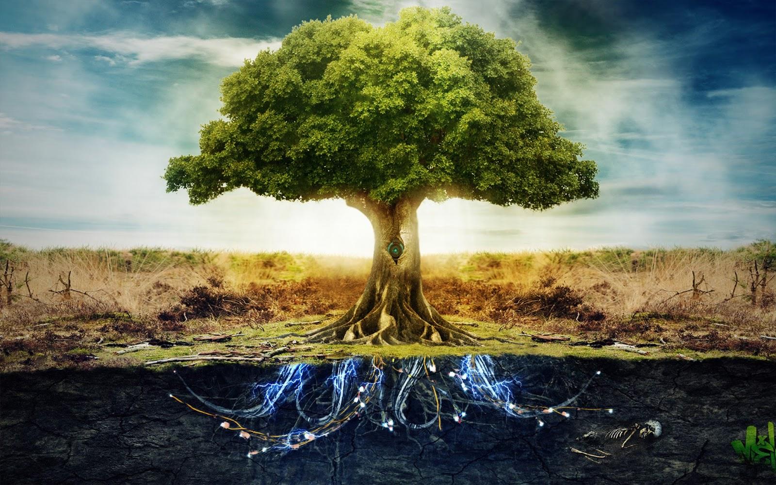 Отмаливание Рода и Древо Рода
