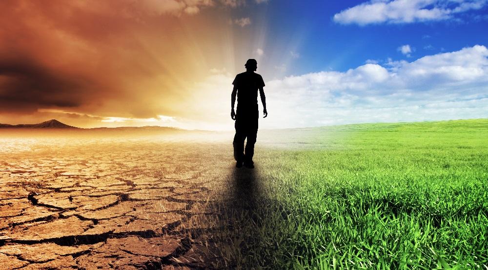 О стыде и похоти, раскаянии и доброте