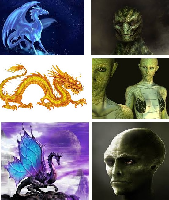 Драконы и рептилии. В чем разница?