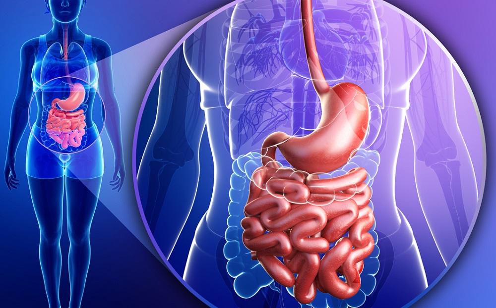 Психосоматика лишнего веса, вопросы о питании. Расстройство желудка
