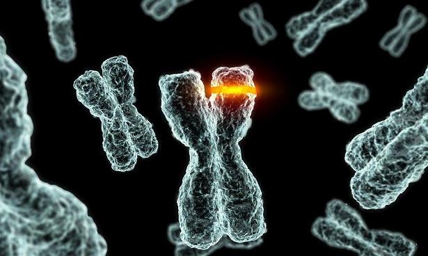 Родовые программы и ДНК. Как женская истерия влияет на мутации генома