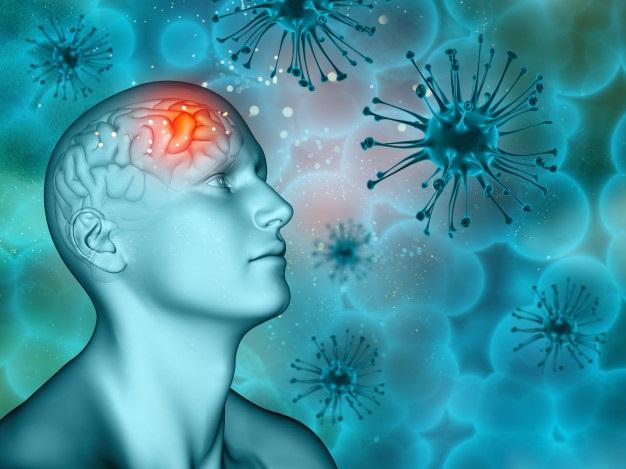ментальные программы и вирусы